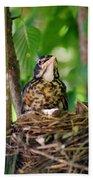 Baby Birds Bath Towel