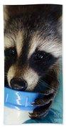 Baby Face Bandit Bath Towel
