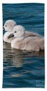 Baby Swans Bath Towel