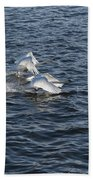 Backlit Swans Bath Towel