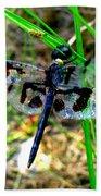 Banded Pennant Dragonfly Bath Towel