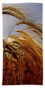 Barley, Co Meath, Ireland Bath Towel