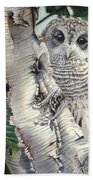 Barred Owl II Bath Towel