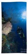 Barrel Sponge And Diver, Belize Bath Towel