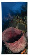 Barrel Sponge Seascape, Belize Bath Towel