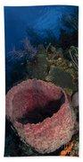 Barrel Sponge Seascape, Belize Bath Towel