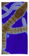 Batrachospermum Sp Algae Lm Bath Towel