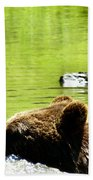 Bearly Swim Bath Towel