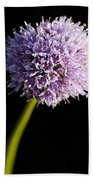 Beautiful Purple Flower With Black Background Hand Towel