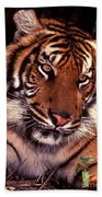 Bengal Tiger In Thought Bath Towel