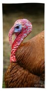 Big Turkey Bath Towel