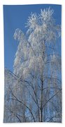 Birch In Frost. Bath Towel