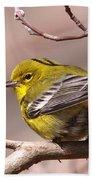 Bird - Pine Warbler - Detail Bath Towel