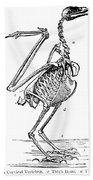 Bird Skeleton Bath Towel