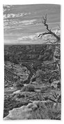 Black And White Image Of Tree Bath Towel