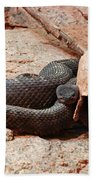 Black Snake Bath Towel