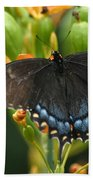 Black Swallowtail Bath Towel