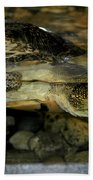 Blandings Turtle Bath Towel