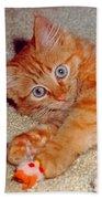 Blue-eyed Kitty Bath Towel