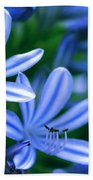 Blue Lily Of The Nile Bath Towel