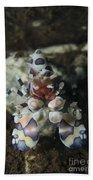Blue Spotted Harlequin Shrimp, Bali Bath Towel