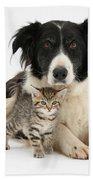 Border Collie And Kitten Bath Towel