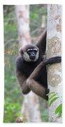 Bornean White-bearded Gibbon Bath Towel