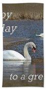 Boss Birthday Card - Mute Swans On Winter Pond Bath Towel