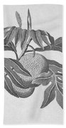 Botany: Breadfruit Tree Bath Towel