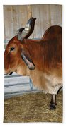brahma Cow Bath Towel