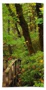Bridge To A Fairytale Bath Towel
