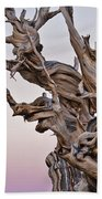Bristlecone Pine - Early Morning - 1 Bath Towel