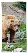 Brown Bear Bath Towel