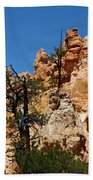 Bryce Canyon Santa Clause Bath Towel