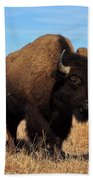 Buffalo Bath Towel