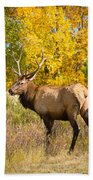 Bull Elk Autum Portrait Bath Towel