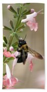 Busy Bee Bath Towel