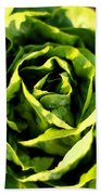 Buttercrunch Lettuce From Above Bath Towel