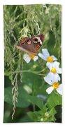 Butterfly 15 Bath Towel