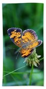 Butterfly In Square  Bath Towel
