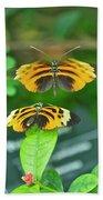 Butterfly Lovers Bath Towel