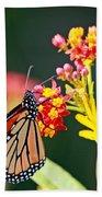 Butterfly Monarch On Lantana Flower Bath Towel