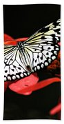 Butterfly On Red Bath Towel