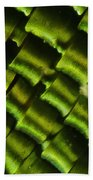 Butterfly Wing Scales Bath Towel