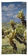 Cactus Also Called Teddy Bear Cholla Bath Towel