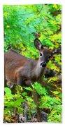 Can I Help You My Deer Bath Towel