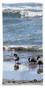 Canada Geese In Lake Erie Bath Towel