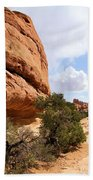 Canyonlands Needles Trail Bath Towel