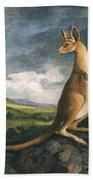 Captain Cook: Kangaroo, 1773 Bath Towel