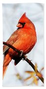 Cardinal 2 Bath Towel